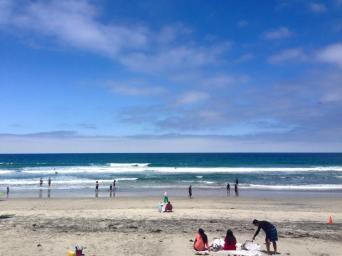 Torrey Pines Beach, La Jolla, CA